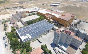 Duru Bulgur üretimde güneş elektriği kullanmaya başladı