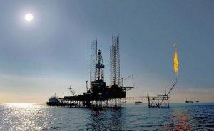 Küresel petrol üretimi Ocak'ta günde 7,33 milyon varil arttı