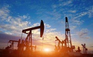 Shell, Mısır'ın Batı Çölü'ndeki varlıklarını satıyor