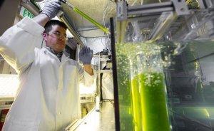 BioLPG'li hibrit araçlar çevreci geçiş seçeneği olabilir