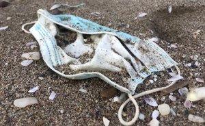 Türkiye'nin Doğu Akdeniz kıyılarında plastik kirliliği alarm veriyor
