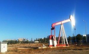 MAPEG TPAO ve Petrogas'ın ortak ruhsatını 10 yıl uzattı