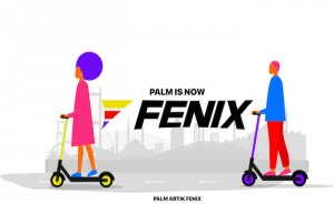 Türkiyeli e-scooter şirketi Palm, Dubaili Felix'e satıldı