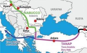 TANAP`ın borularına 29 şirket talip