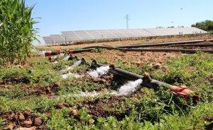 Şanlıurfalı çiftçi sulama için GES kurdu