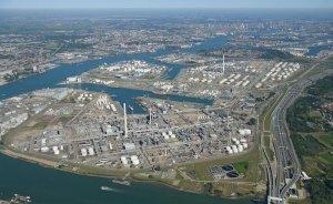 Shell Hollanda'da biyoyakıt tesisi kuracak