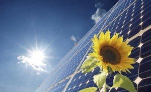 Temmuz'da lisanssız elektrik üretiminin yüzde 98'i güneşten