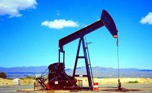 Türkiye 2012`de kaç varil petrol üretti?