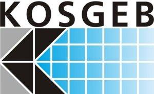 KOSGEB, uzman yardımcıları alacak