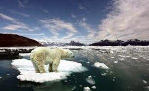 İklim değişikliği konusunda Türkiye üzerine düşeni yapmıyor