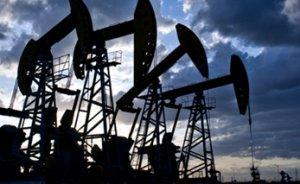 Ham petrol ithalatı 10 ayda yüzde 5.4 azaldı