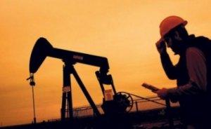 Kasım ayında ham petrol ithalatı yüzde 20 arttı