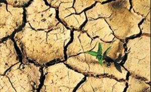 Amerikalı çevrecilerin kuraklık silahı