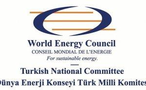 DEK Türk Milli Komitesi seçimleri yapılıyor