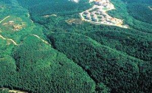 Ormanlık alanlar enerji aramalarına açıldı