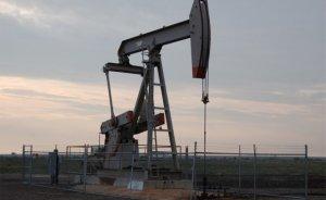 İki şirketin petrol arama talebine ret!