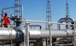 TPAO ve Amity İstanbul`da doğalgaz çıkaracaklar