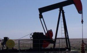TPAO Irak'ta yeni sahalar alacak