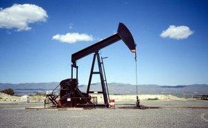 NV Turkse`den petrol için 55 dönümlük kamulaştırma