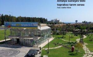 Antalya`da bir yıldız kaydı: Güneşevi